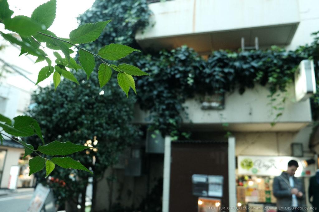 【X-T30編】初心者にオススメする富士フイルムのミラーレスカメラ