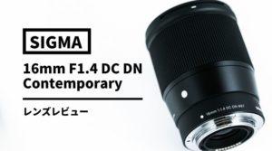 【実写レビュー】SIGMA16mm F1.4 DC DN | Contemporary